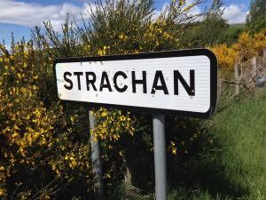 Strachan Sign
