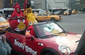 birds in a car