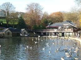 roundhay lake