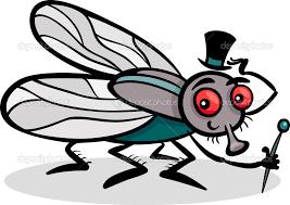 ant wings