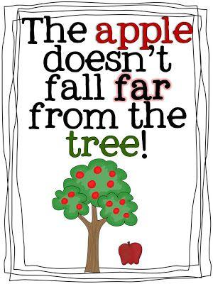 apple falling tree