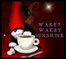 126662-Wakey-Wakey-Sunshine