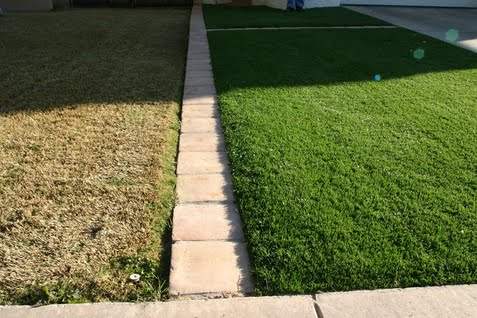 Grass-is-greener-on-the-other-side